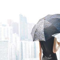 レース刺繍の日傘
