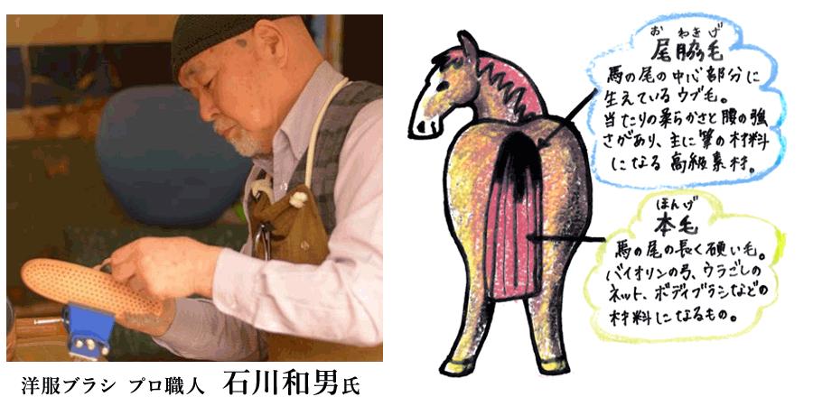 石川和男氏と馬の尾脇毛イラスト