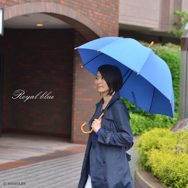 モデル写真 ロイヤルブルー