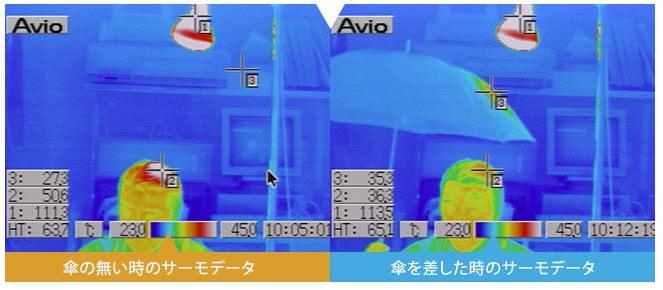 頭の温度比較画像