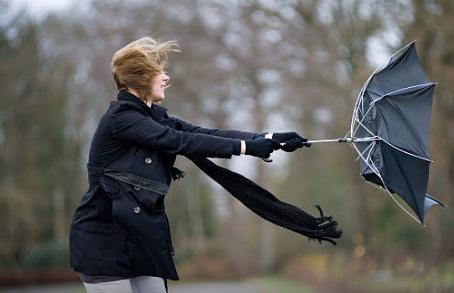おちょこになってる傘の写真1
