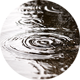 夕立を想定して晴雨兼用を持つ 画像