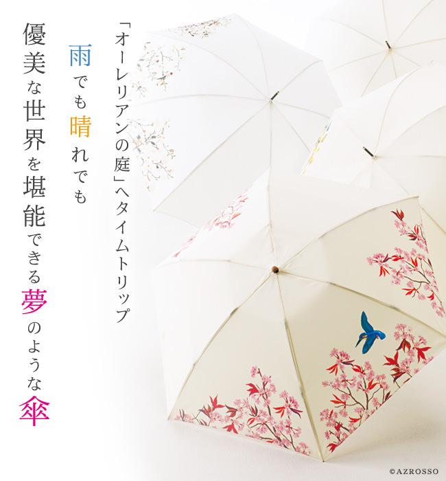 家庭画報×今森光彦 オーレリアンの長傘