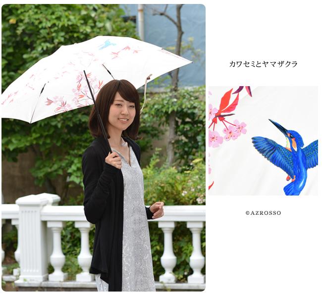 モデル写真 カワセミとヤマザクラ